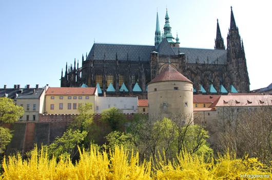 プラハ城の画像 p1_14
