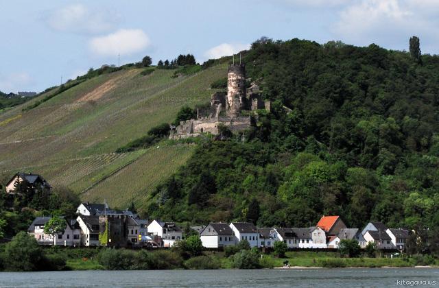 フュルステンベルク城 Ruine Fürstenberg