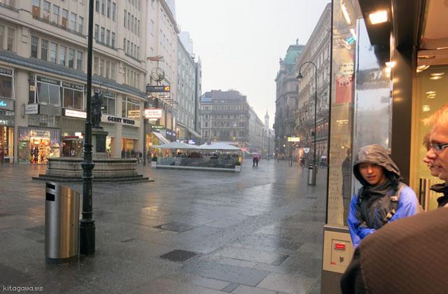 ウィーンのスコール