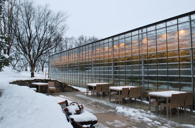 トマト農家 温室 アイスランド