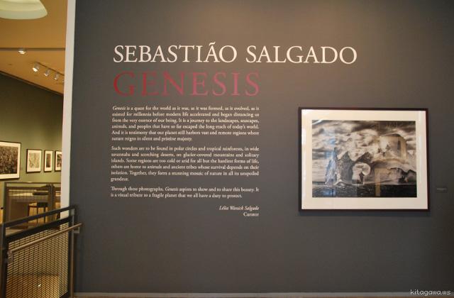 Sebastião Salgado セバスチャン・サルガド