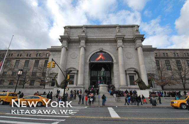 ニューヨーク自然史博物館 American Museum of Natural History