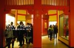 アメリカ自然史博物館 ニューヨーク 日本の展示