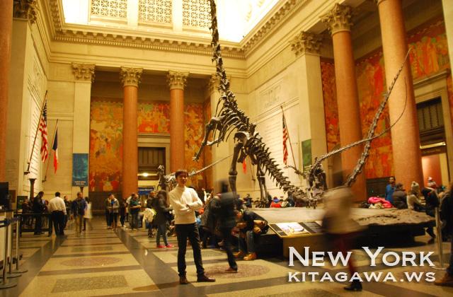 ニューヨーク アメリカ自然史博物館 旅行記