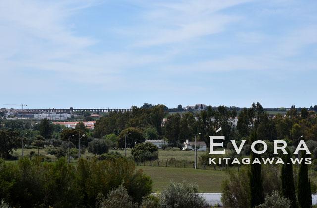 エヴォラ 水道橋
