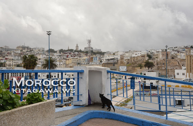モロッコ タンジェ港 フェリー