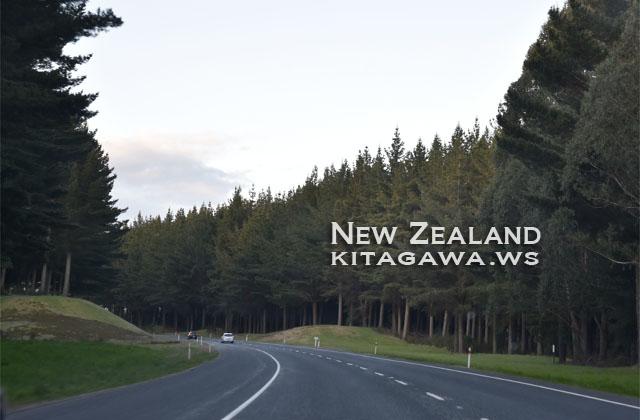 ニュージーランド ドライブ レンタカー