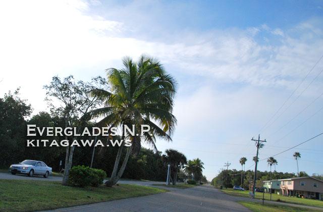 エバーグレーズシティ Everglades City