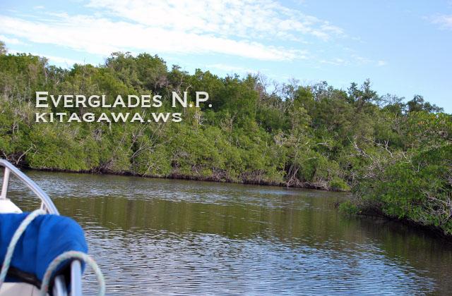 エバーグレーズ国立公園 行き方