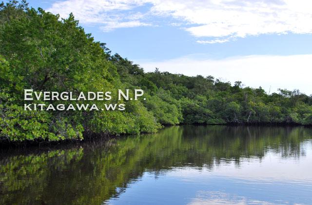 エバーグレーズ国立公園 旅行記