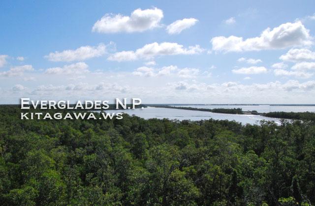 エバーグレーズ国立公園の画像 p1_16