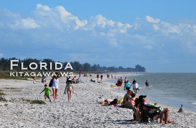 フロリダ サニベル島