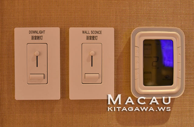 Sheraton Macao Hotel, Cotai Central
