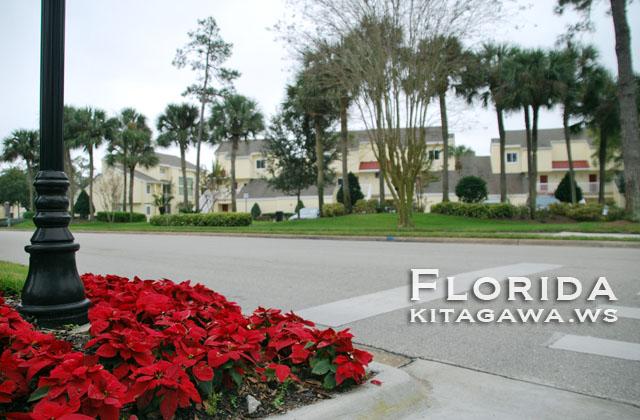 Sheraton Vistana Resort Villas, Lake Buena Vista, Orlando