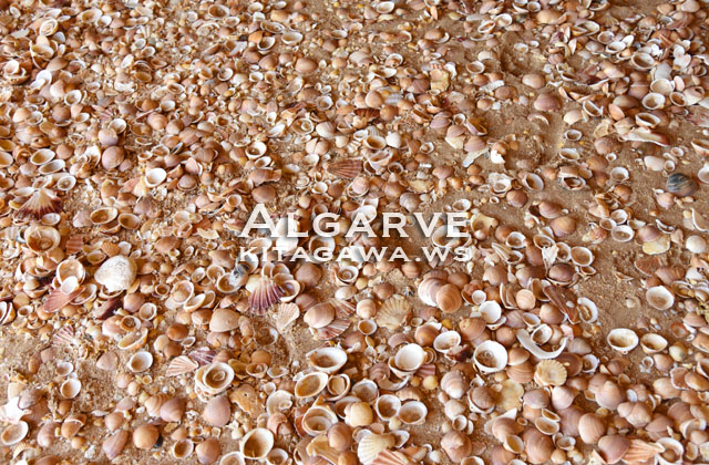 Praia de Carvoeiro, Algarve アルガルヴェ・カルヴォエイロ