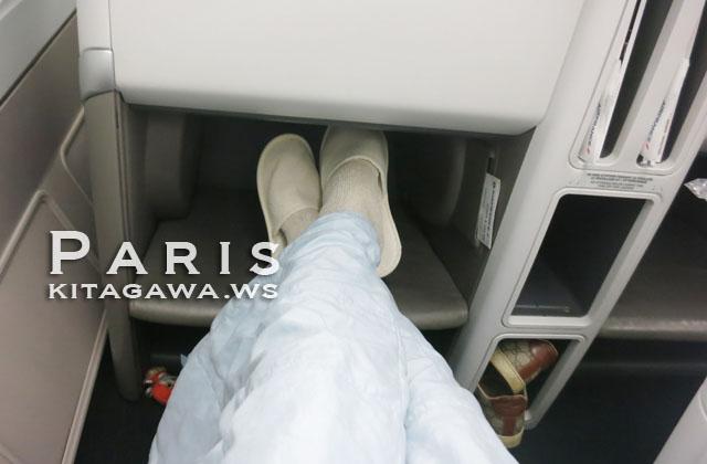 エールフランス航空ビジネスクラス搭乗記