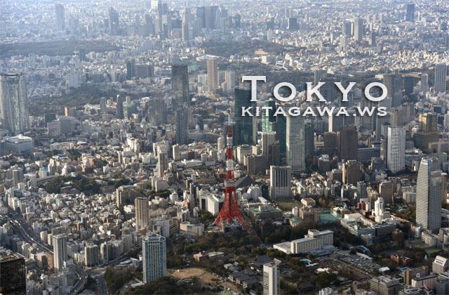 ヘリコプター 東京 クルージング