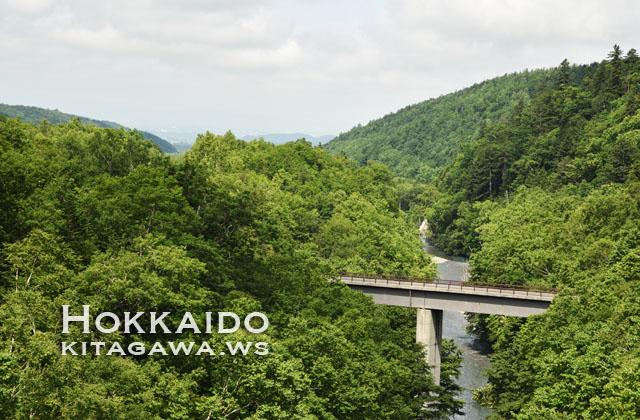 北海道旅行記
