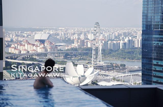 ウェスティンシンガポール プール