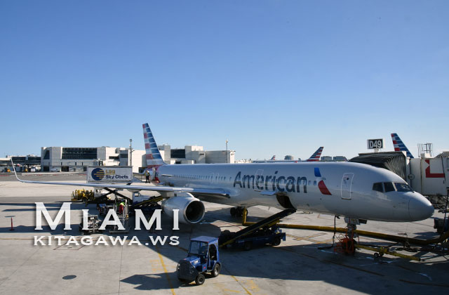 ドミニカ共和国プンタカナ行きアメリカン航空 搭乗記