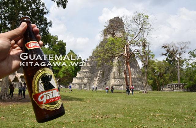 グアテマラ gallo ビール
