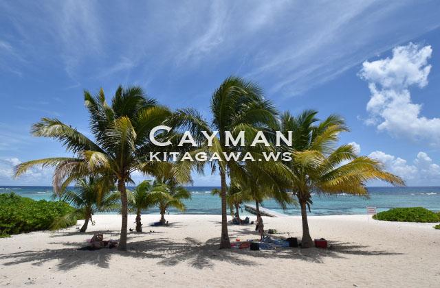 spotts beach cayman island