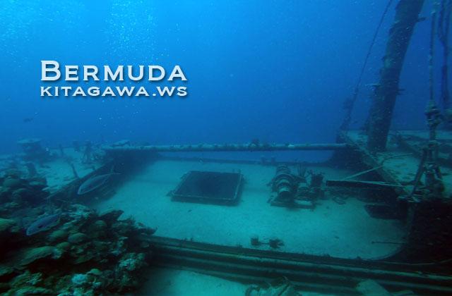 バミューダ ダイビング