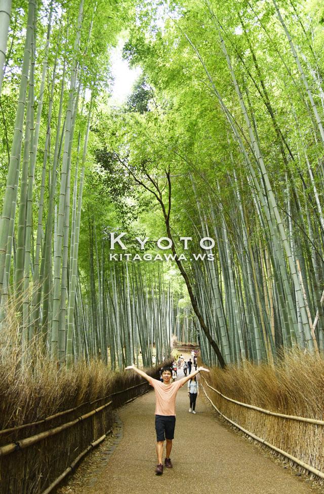 京都 旅行記