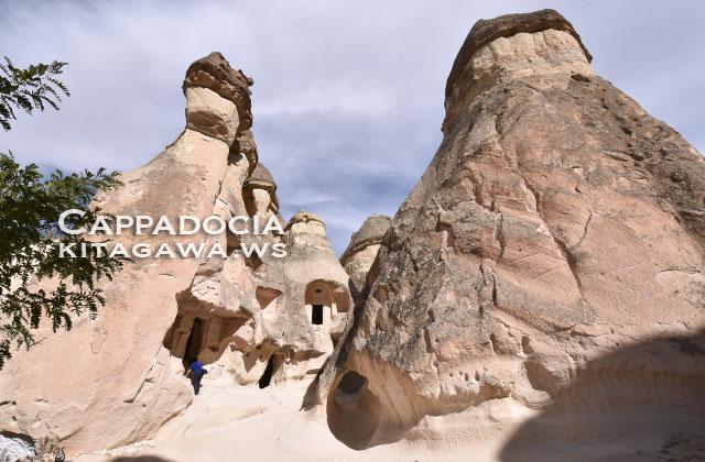 パシャバー きのこ岩
