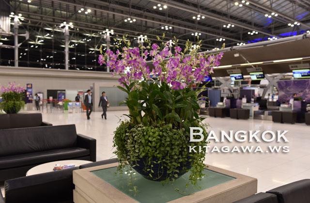 タイ航空ビジネスクラスチェックイン