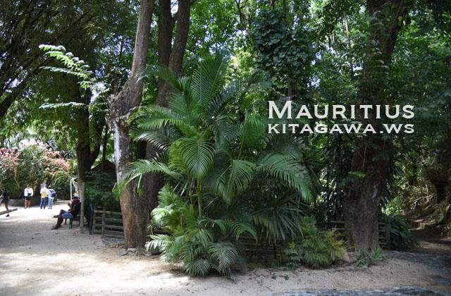 La Vanille, Mauritius