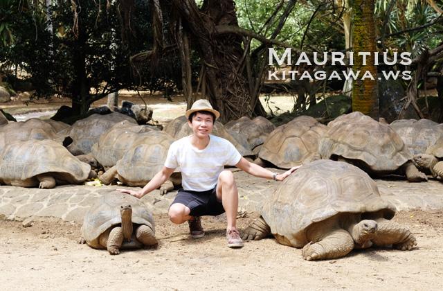 モーリシャス旅行記ブログ