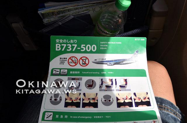 ANA B737-500