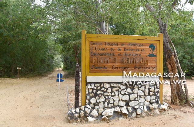 Kirindy Forest Reserve