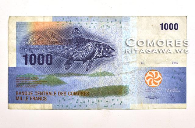 コモロ紙幣 1000 Comorian Franc