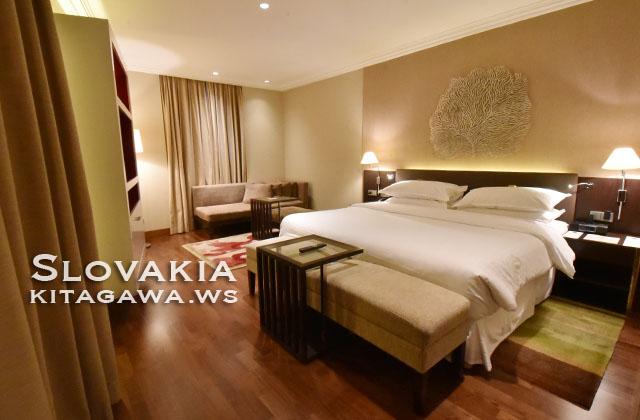 シェラトン ブラチスラバ ホテル スロバキア