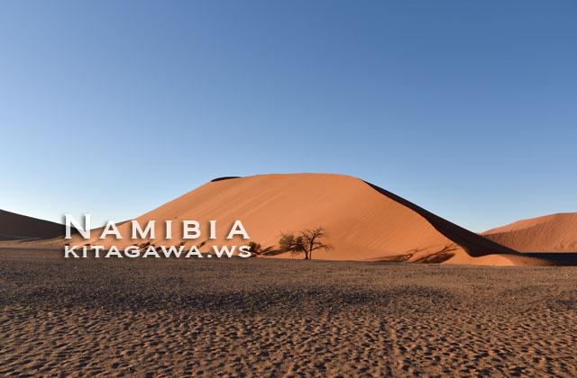 Dune 45 ナミブ砂漠 ナミビア旅行記