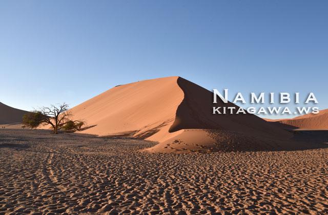 デューン45 ナミビア