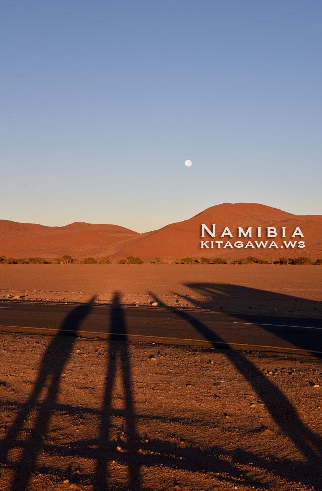 ナミブ砂漠 見学ツアー