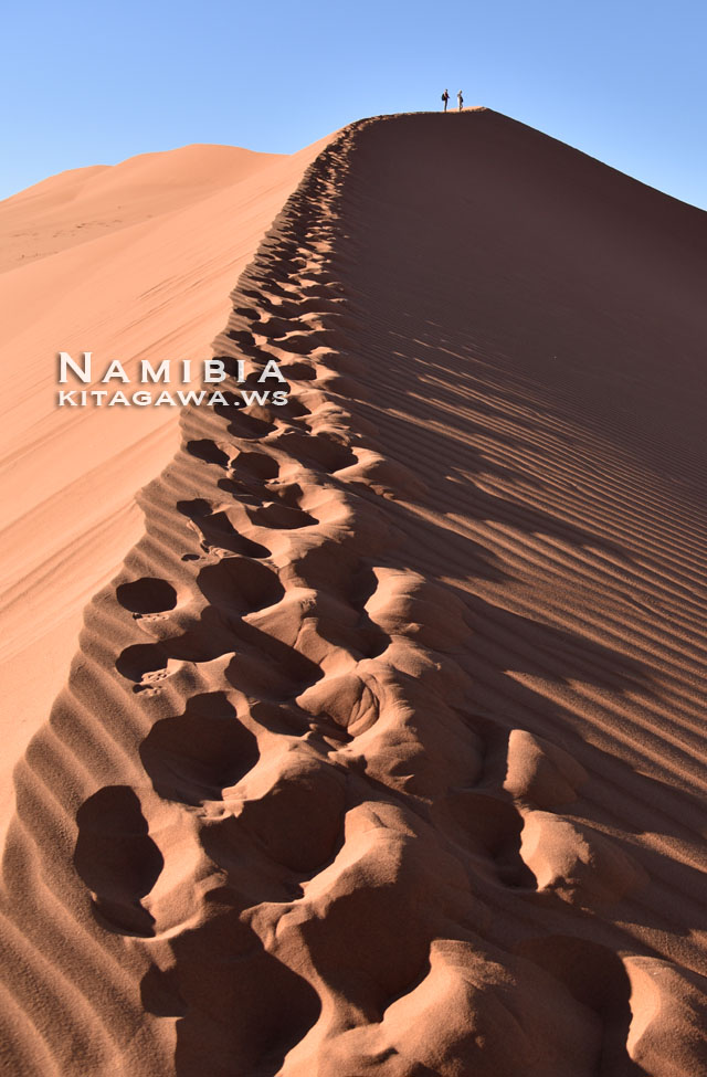 ナミブ砂漠 ソススフレイ ビッグダディデューン