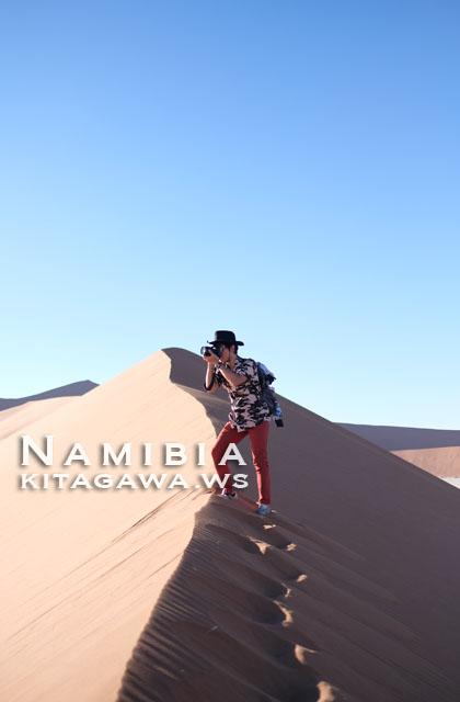 ナミビア砂漠 旅行記ブログ